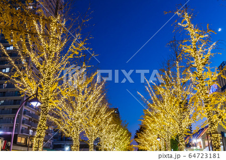 光が丘公園のイルミネーション 東京夜景 64723181