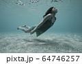 水中の女性 64746257