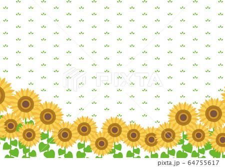 ひまわりのフレーム イラスト sunflower 64755617