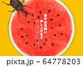 暑中見舞い-スイカ-かぶとむし 64778203