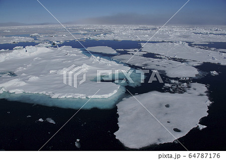 北極海の氷 64787176