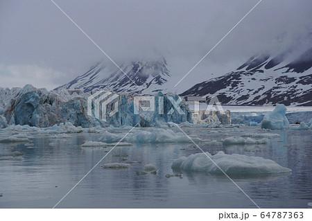 北極圏の氷河 64787363