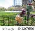 COVID-19 NYC セントラルパーク仮設病院 64807650