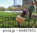 COVID-19 NYC セントラルパーク仮設病院 64807651