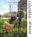 COVID-19 NYC セントラルパーク仮設病院 64807653