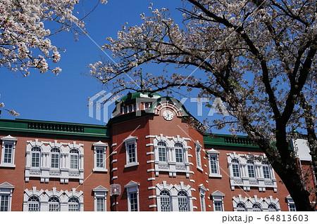 4月 深谷97深谷駅(新装)南口の桜 64813603