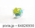 琥珀糖(こはくとう) 64826930