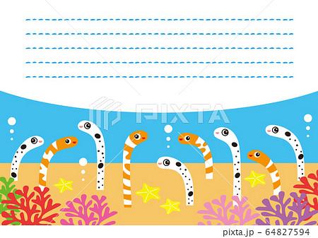 チンアナゴ ニシキアナゴ キャラクター ミニレター イラスト 64827594