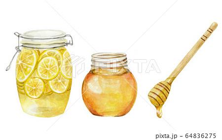 はちみつレモン 蜂蜜 ハニーディッパー 水彩イラスト 64836275