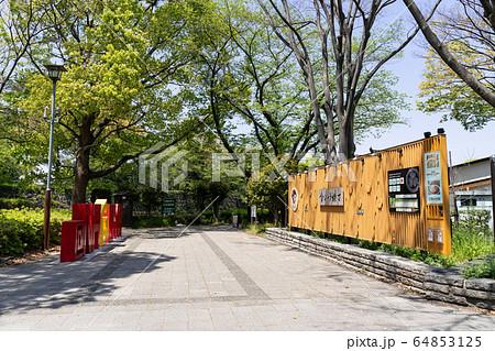金シャチ横丁 宗春ゾーン入り口  名古屋市営地下鉄 市役所駅 7番出入口 付近 64853125