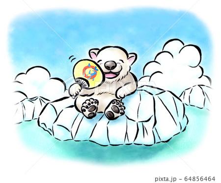 北極の夏 64856464