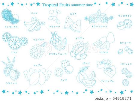 東南アジアのトロピカルフルーツ 白 64919271