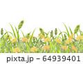 たんぽぽとねこじゃらし 64939401