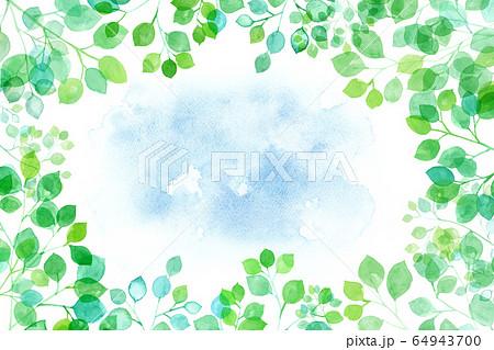 見上げた新緑から覗くの空の背景 木漏れ日の水彩イラスト 64943700