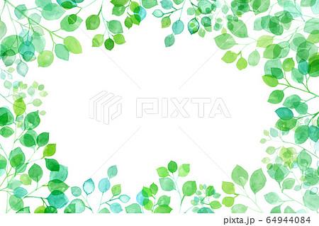 見上げた新緑、太陽光に透過し輝く枝葉の水彩イラスト、フレーム背景 64944084