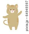 踊る猫 64949397