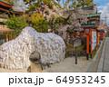 京都 安井金比羅宮 64953245