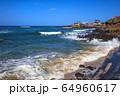 風景 自然 済州島 64960617