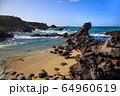 風景 自然 済州島 64960619