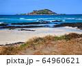 風景 自然 済州島 64960621