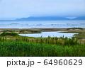 風景 自然 済州島 64960629