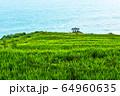 風景 南海 ダレンイ村 64960635