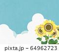 背景-向日葵-空 64962723