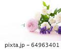 背景用 切り花 菊 64963401