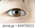 眼のアップ 64976022