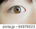 眼のアップ 64976023