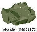 海藻 アナアオサ  ベクター素材 64991373