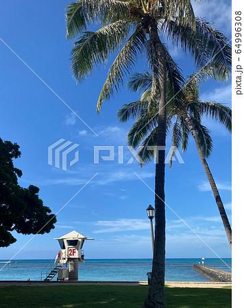 青い海と青空のクィーンズ・ビーチ 64996308