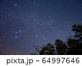 御坂山地・雪頭ヶ岳から見る冬の星座 64997646