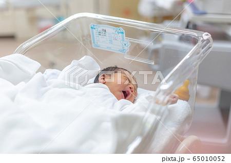 新生児 生後1日の赤ちゃん 65010052