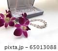 パール ジュエリーギフト 65013088