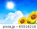 向日葵畑 65016216