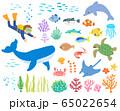 海の生き物_ダイバー2_手描き 65022654