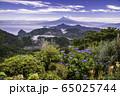 【静岡県】伊豆の国パノラマパークから望む富士山 65025744