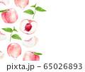 桃 柄 水彩イラスト 65026893