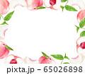 桃 フレーム 水彩イラスト 65026898