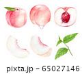 いろいろな桃のセット 水彩イラスト 65027146