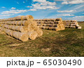 Hay bales. Close-up of hay bales stacked in stacks. Harvesting in agriculture. 65030490