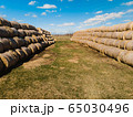 Sheaves of hay in a field in the sunshine 65030496