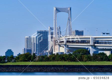 東京湾風景 台場公園とレインボーブリッジ 65034828