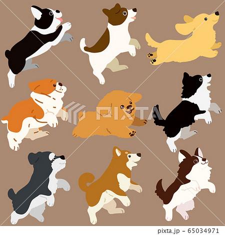色々な犬ジャンプセット 主線なし 65034971
