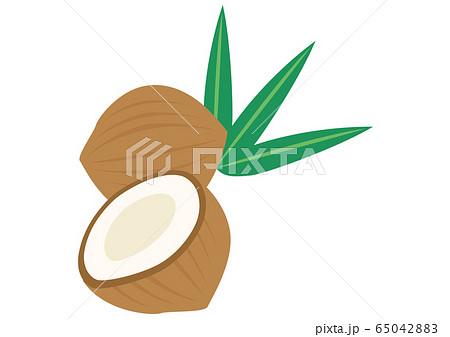 トロピカルフルーツ ココナッツ 65042883