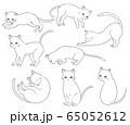白猫 65052612