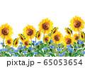 ヒマワリとツユクサ 65053654