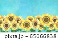 背景-向日葵 65066838
