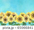 背景-向日葵 65066841